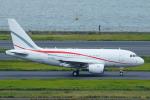 よっしぃさんが、羽田空港で撮影したグローバル・ジェット・ルクセンブルク A318-112 CJ Eliteの航空フォト(写真)