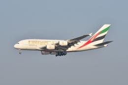 ポン太さんが、スワンナプーム国際空港で撮影したエミレーツ航空 A380-842の航空フォト(飛行機 写真・画像)