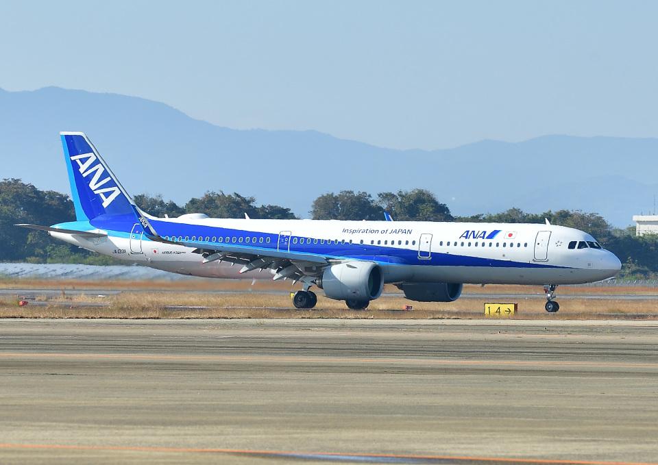 じーく。さんの全日空 Airbus A321neo (JA133A) 航空フォト