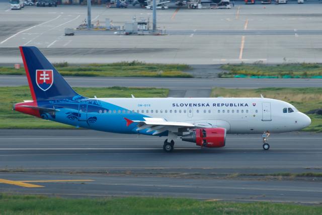 よっしぃさんが、羽田空港で撮影したスロバキア政府 A319-115CJの航空フォト(飛行機 写真・画像)