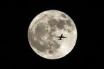 とらとらさんが、某所で撮影した不明 767-300の航空フォト(写真)