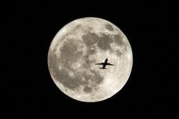 とらとらさんが、某所で撮影した不明 767-300の航空フォト(飛行機 写真・画像)
