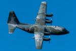 みぐさんが、名古屋飛行場で撮影した航空自衛隊 C-130H Herculesの航空フォト(写真)