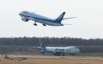 うみBOSEさんが、新千歳空港で撮影した全日空 787-8 Dreamlinerの航空フォト(写真)