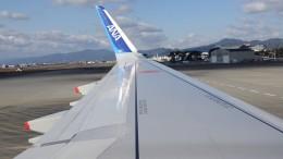 BOSTONさんが、徳島空港で撮影した全日空 A321-211の航空フォト(飛行機 写真・画像)