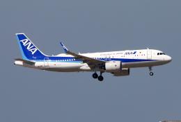 Asamaさんが、香港国際空港で撮影した全日空 A320-271Nの航空フォト(飛行機 写真・画像)