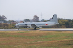 ぼのさんが、入間飛行場で撮影した航空自衛隊 YS-11A-305EBの航空フォト(写真)