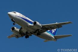 遠森一郎さんが、福岡空港で撮影したエアーネクスト 737-5Y0の航空フォト(飛行機 写真・画像)