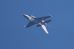 kij niigataさんが、小松空港で撮影したアメリカ空軍 F-16 Fighting Falconの航空フォト(写真)
