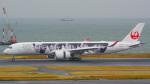 tkosadaさんが、羽田空港で撮影した日本航空 A350-941XWBの航空フォト(写真)