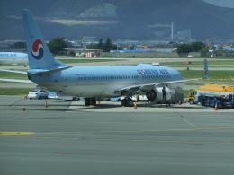 ヒロリンさんが、金海国際空港で撮影した大韓航空 737-8SHの航空フォト(飛行機 写真・画像)