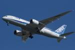 いぬ_さんが、成田国際空港で撮影した全日空 787-8 Dreamlinerの航空フォト(写真)