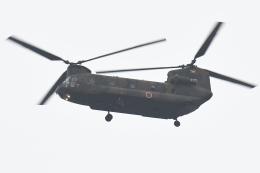500さんが、自宅上空で撮影した陸上自衛隊 CH-47Jの航空フォト(飛行機 写真・画像)