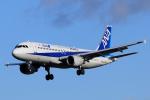 syo12さんが、函館空港で撮影した全日空 A320-211の航空フォト(飛行機 写真・画像)