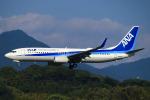 ひよっこさんが、福岡空港で撮影した全日空 737-881の航空フォト(写真)