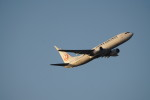 senbaさんが、羽田空港で撮影した日本航空 737-846の航空フォト(写真)
