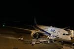 endress voyageさんが、岡山空港で撮影した全日空 787-8 Dreamlinerの航空フォト(飛行機 写真・画像)