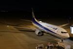 endress voyageさんが、岡山空港で撮影した全日空 737-881の航空フォト(飛行機 写真・画像)