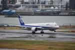 セッキーさんが、羽田空港で撮影した全日空 787-8 Dreamlinerの航空フォト(写真)