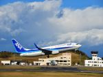ナナオさんが、IWJで撮影した全日空 737-881の航空フォト(写真)