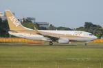 tassさんが、成田国際空港で撮影した全日空 737-781の航空フォト(飛行機 写真・画像)