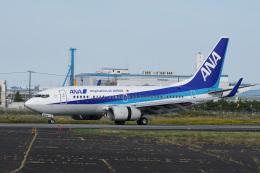 神宮寺ももさんが、徳島空港で撮影した全日空 737-781の航空フォト(飛行機 写真・画像)