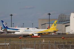imosaさんが、成田国際空港で撮影したSMBCアヴィエーションキャピタル A320-214の航空フォト(飛行機 写真・画像)