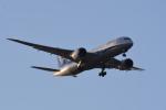 TOPAZ102さんが、伊丹空港で撮影した全日空 787-8 Dreamlinerの航空フォト(写真)
