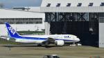パンダさんが、成田国際空港で撮影した全日空 787-8 Dreamlinerの航空フォト(飛行機 写真・画像)