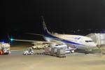 KKiSMさんが、函館空港で撮影した全日空 737-881の航空フォト(写真)