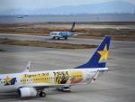空が大好き!さんが、神戸空港で撮影したスカイマーク 737-86Nの航空フォト(写真)