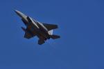 md11jbirdさんが、岐阜基地で撮影した航空自衛隊 F-15J Eagleの航空フォト(写真)