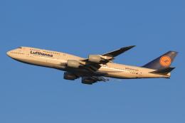 航空フォト:D-ABYG ルフトハンザドイツ航空 747-8