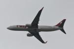 kuro2059さんが、香港国際空港で撮影したティーウェイ航空 737-8ALの航空フォト(飛行機 写真・画像)