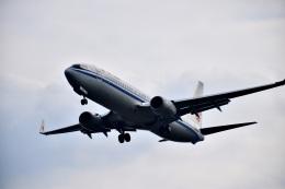 CKG_Gaoさんが、重慶江北国際空港で撮影した中国国際航空 737-89Lの航空フォト(飛行機 写真・画像)