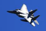 オポッサムさんが、岐阜基地で撮影した航空自衛隊 F-15J Eagleの航空フォト(写真)