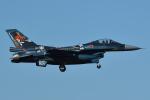 sepia2016さんが、茨城空港で撮影した航空自衛隊 F-2Aの航空フォト(飛行機 写真・画像)