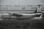 tassさんが、成田国際空港で撮影したヘビーリフト・カーゴ・エアラインズの航空フォト(飛行機 写真・画像)