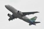 kuro2059さんが、香港国際空港で撮影したランメイ・エアラインズ A319-131の航空フォト(飛行機 写真・画像)