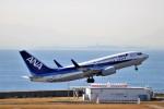 MSN/PFさんが、中部国際空港で撮影した全日空 737-781の航空フォト(飛行機 写真・画像)