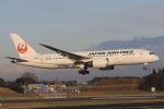 みるぽんたさんが、成田国際空港で撮影した日本航空 787-8 Dreamlinerの航空フォト(写真)