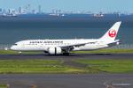 みなかもさんが、羽田空港で撮影した日本航空 787-8 Dreamlinerの航空フォト(写真)