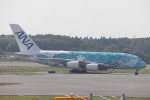 Shibataさんが、成田国際空港で撮影した全日空 A380-841の航空フォト(飛行機 写真・画像)