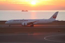 RAOUさんが、中部国際空港で撮影した日本航空 787-9の航空フォト(写真)