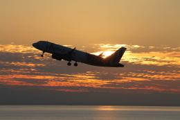 RAOUさんが、中部国際空港で撮影した香港エクスプレス A320-271Nの航空フォト(写真)