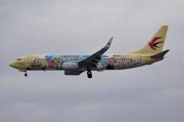 中国東方航空 Boeing 737-800 (B-1316)  航空フォト | by Fuseyaさん  撮影2019年11月27日%s