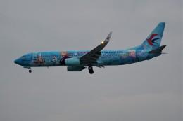 中国東方航空 Boeing 737-800 (B-1317)  航空フォト | by Fuseyaさん  撮影2019年11月27日%s