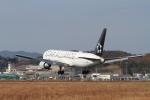 LEVEL789さんが、岡山空港で撮影した全日空 767-381/ERの航空フォト(写真)