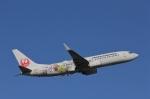 だいまる。さんが、岡山空港で撮影した日本航空 737-846の航空フォト(飛行機 写真・画像)