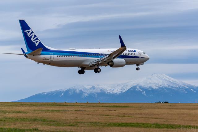 ひげじいさんが、庄内空港で撮影した全日空 737-881の航空フォト(飛行機 写真・画像)